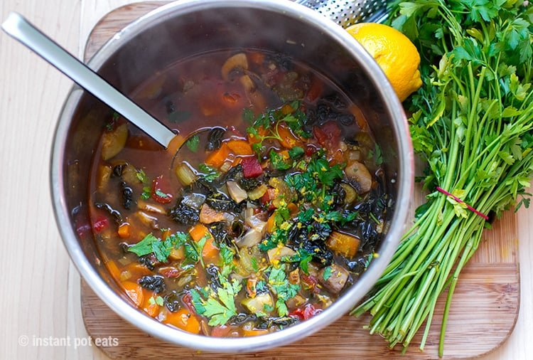 Quick & Easy Instant Pot Italian Farmhouse Vegetable Soup