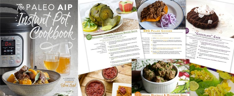 The Paleo AIP Instant Pot Cookbook by Eileen Laird