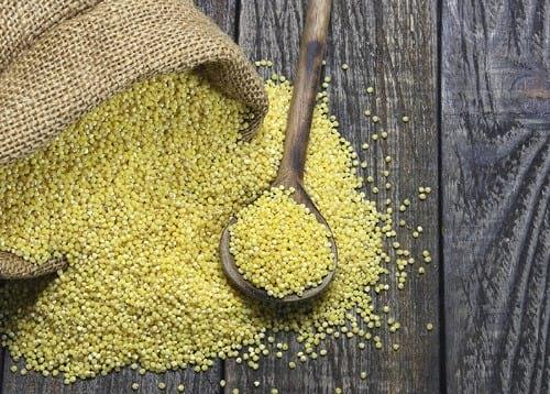 Instant Pot millet
