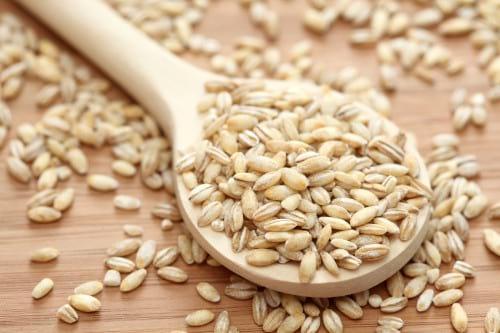 Instant Pot barley