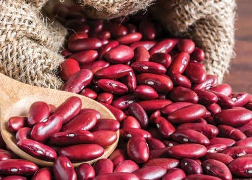 Kidney Beans in Instant Pot