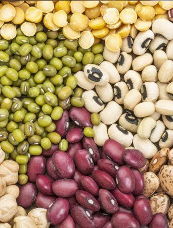 instant-pot-legumes-guide-feature