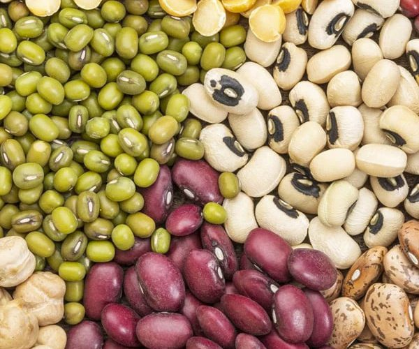instant-pot-legumes-guide-feature