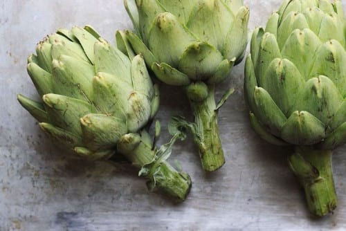 Artichokes in Instant Pot