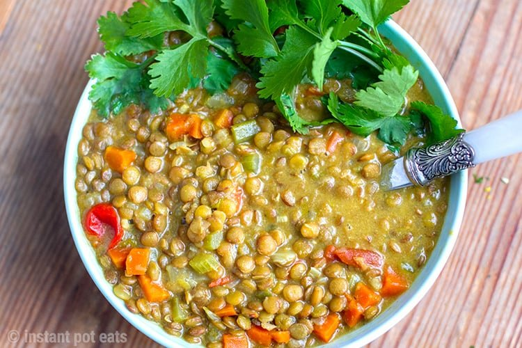 Instant Pot Curried Coconut Lentils - Easy Recipe