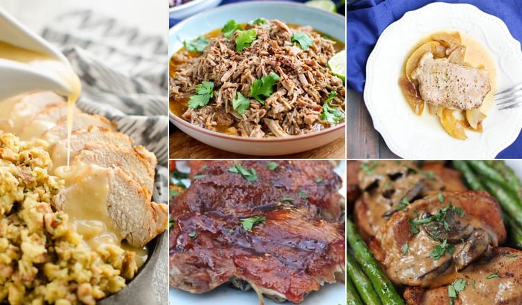 15 Tasty Instant Pot Por Recipes. Perfect for lunch, dinner and meal prep ideas.