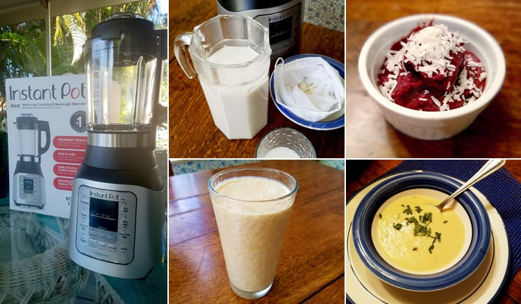 Instant Pot Blender Review - We Tested The Ace Blender & Here Is What We Thought