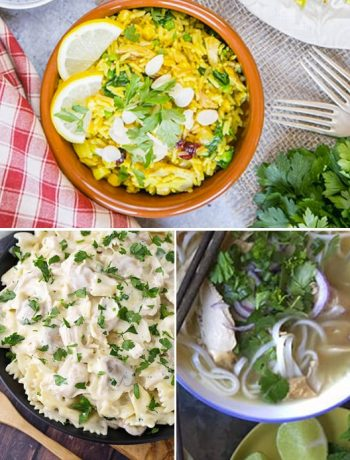 leftover-turkey-instant-pot-recipes