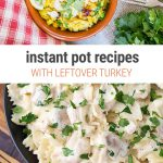 Instant Pot Leftover Turkey Recipes