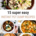 15 Super Easy Instant Pot Dump Recipes
