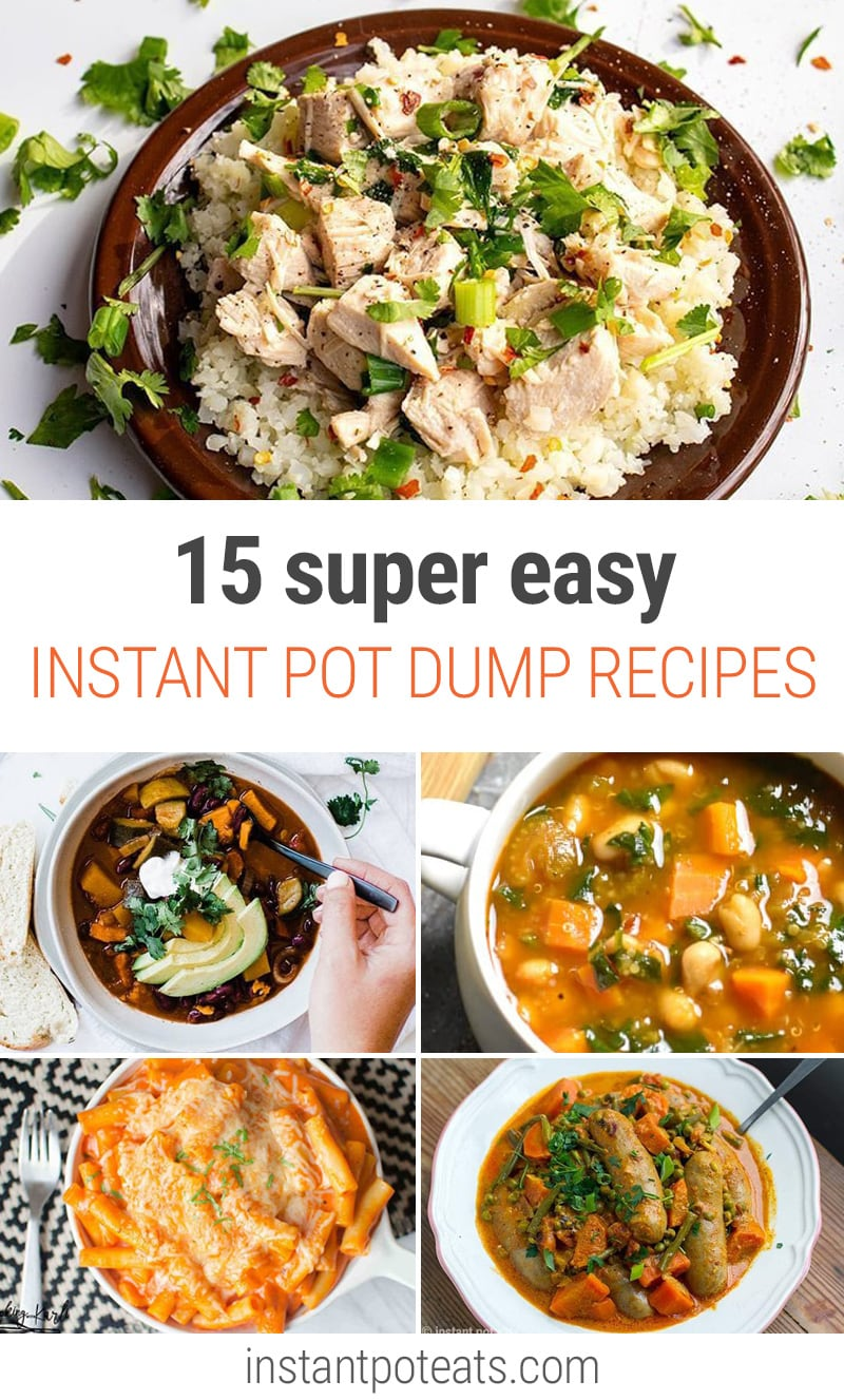 15 Easy Instant Pot Dump Recipes