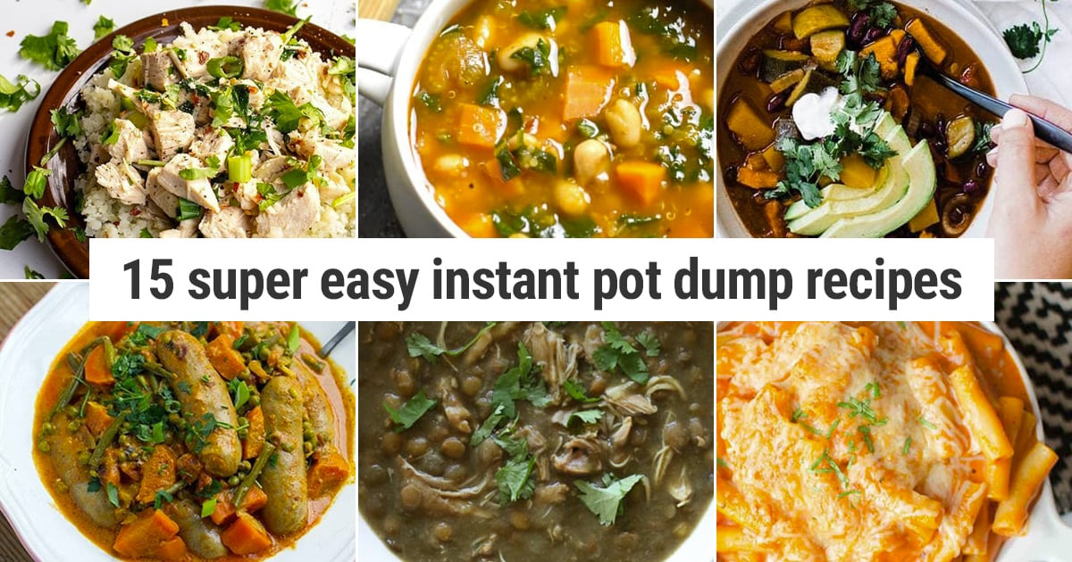 15 Instant Pot Dump Recipes That Are Easy