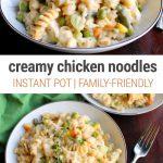 Creamy Instant Pot Chicken & Noodles Recipe