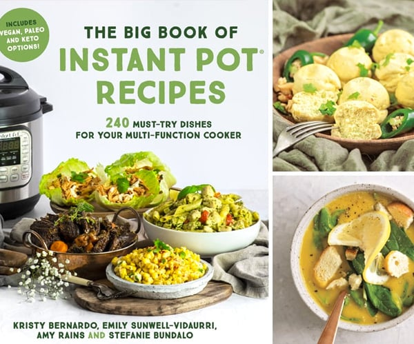 Cookbook Review Big Book Of Instant Pot Recipes