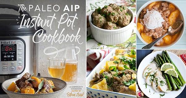 COOKBOOK REVIEW: THE PALEO AIP INSTANT POT COOKBOOK