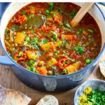 Best Instant Pot Vegetable Stew Recipe