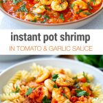 Instant Pot Tomato Garlic Shrimp From Frozen