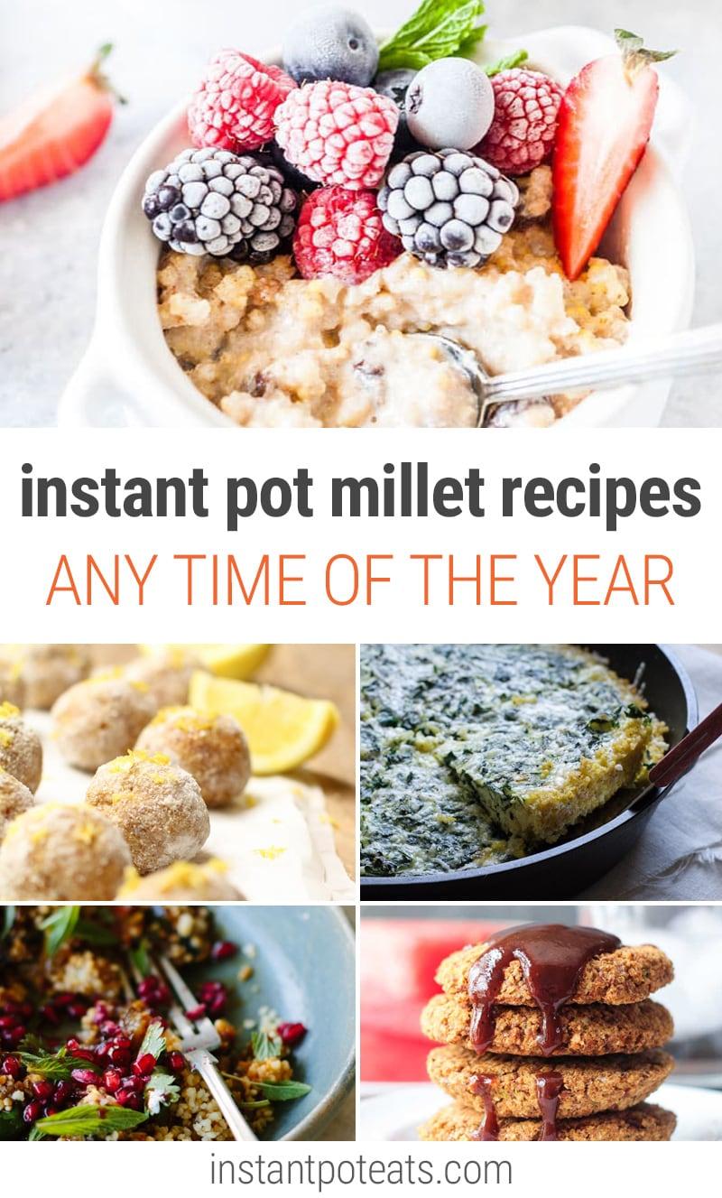 Instant Pot Millet Recipes