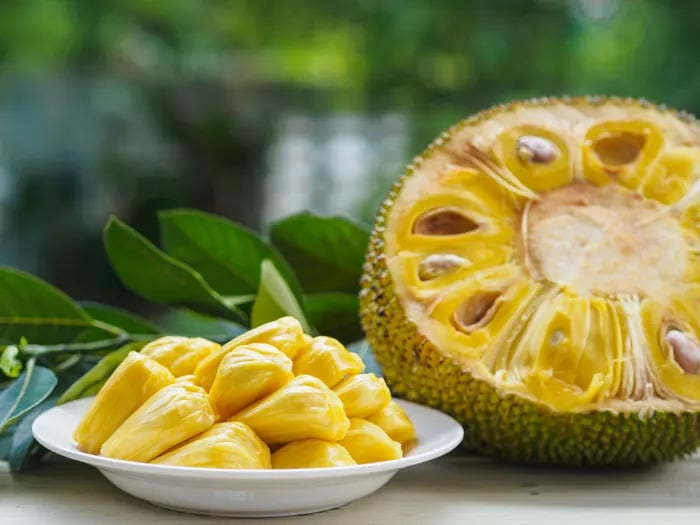 what is jackfruit