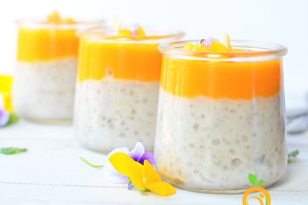 Instant Pot Tapioca Pudding