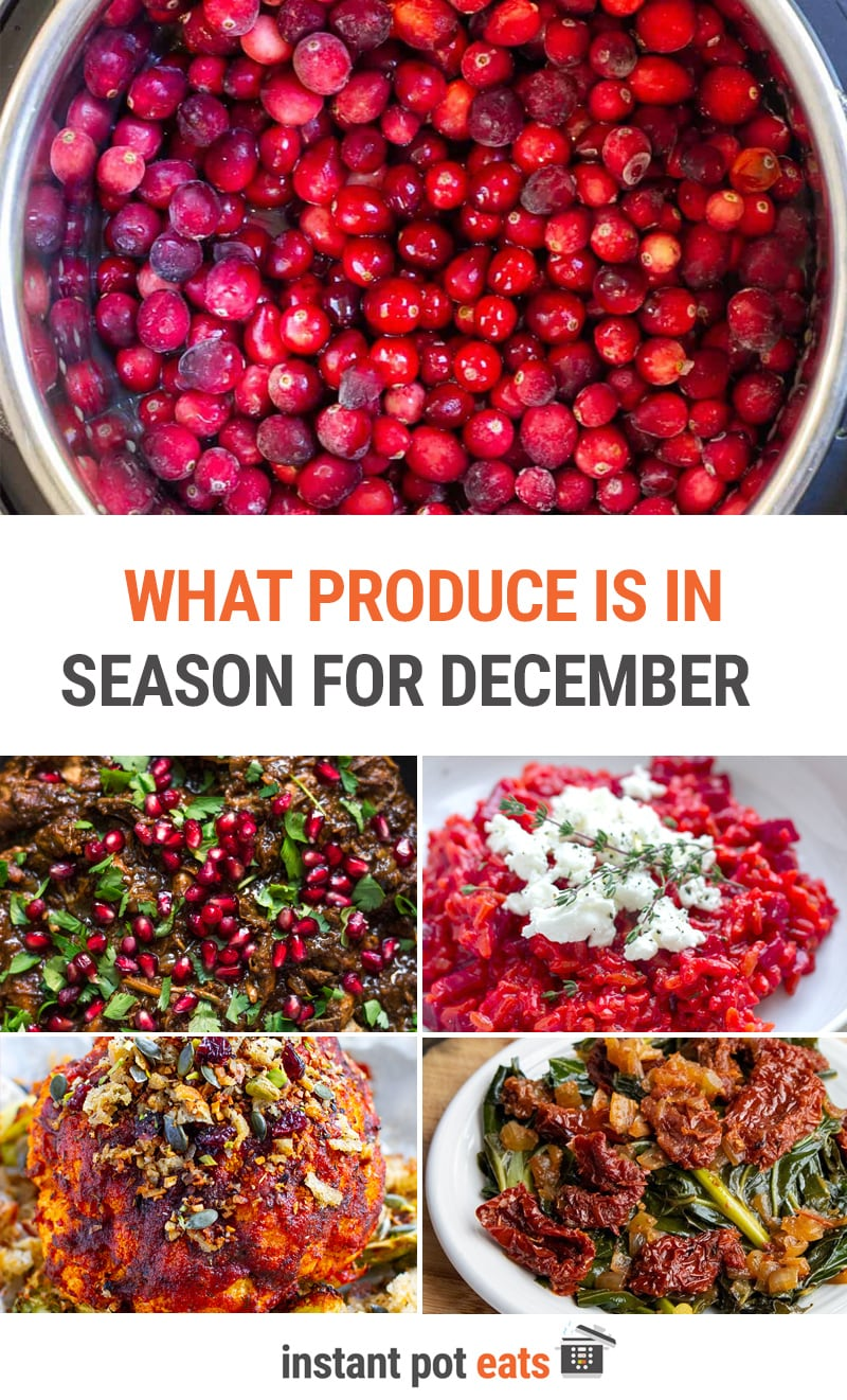 What To Cook In Your Instant Pot In December