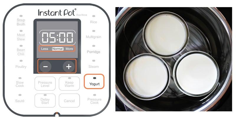 Instant Pot Yogurt Button Explained
