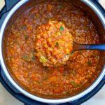 Instant Pot Lentil Stew With Vegetables